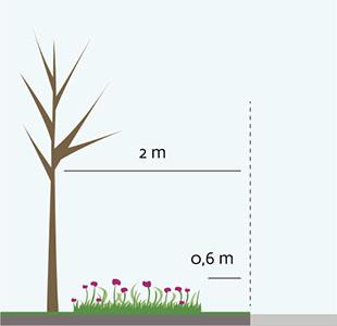 Nyplantering