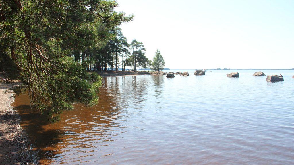 Vattnet vid Sandsnäsbadet