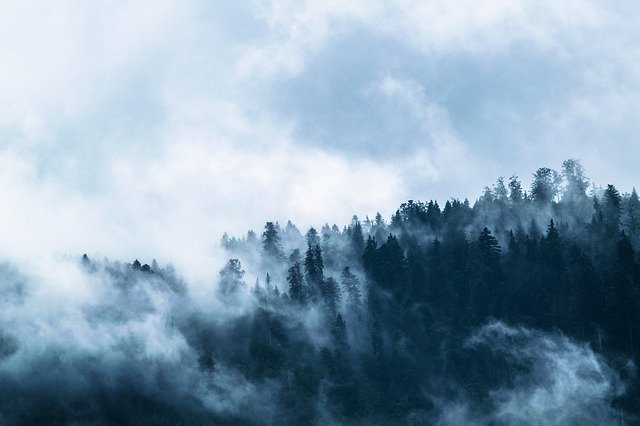 fog-1535201_640