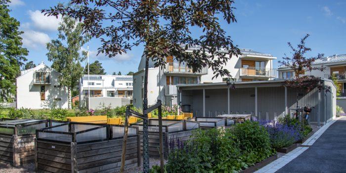 Hus och träd på Almvägen i Gävle