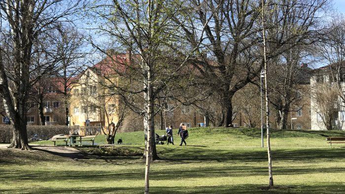 Vy över Brunnsparken i vårsol och träd som slår ut. En grupp vuxna går på en gångväg tillsammans med barn och en hund. Bänkar, bord och belysning syns längs gångvägen.