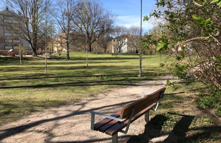 Parkbänk vid en gångväg. I bakgrunden syns gräsmattta, utspridda träd och en lekpark.