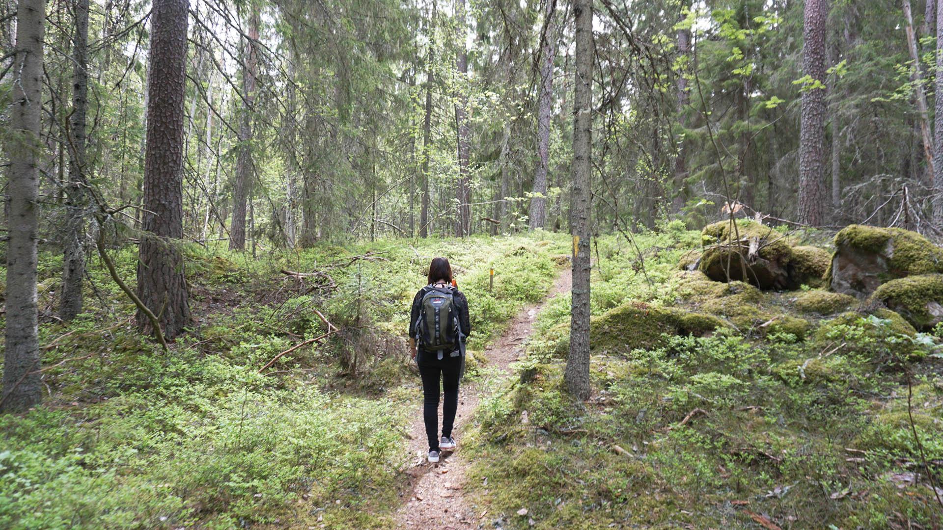 Kvinna vandrar längs en stig i skogen i Oslättfors.