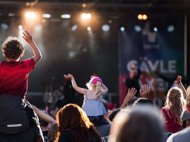 Publikhav vid Gävle stadsfest.