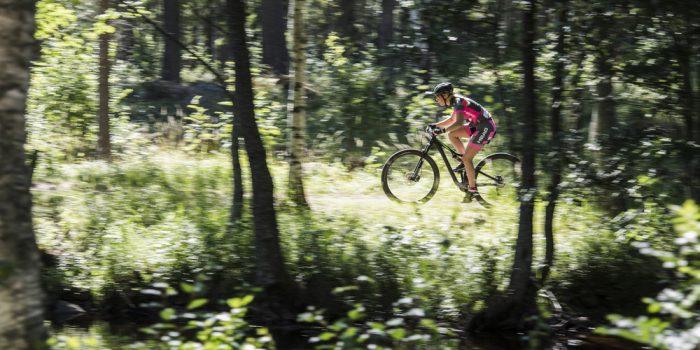 Mountainbike cykling i skogen.